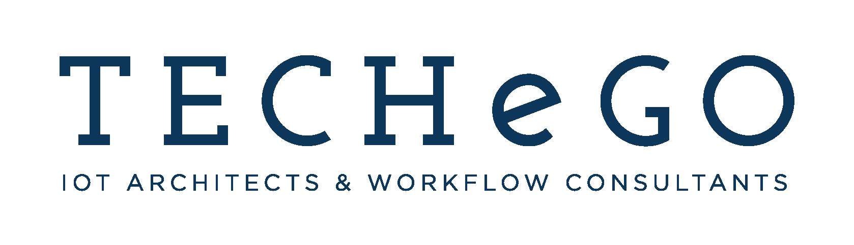 TECHeGO Logo